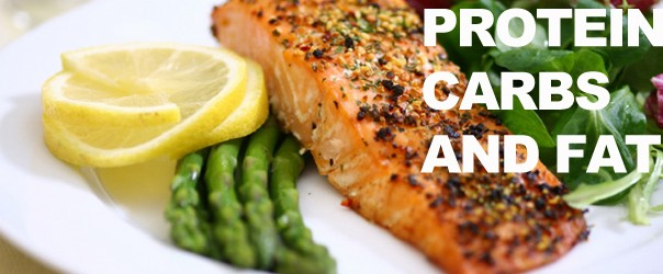 protein carbs and fats